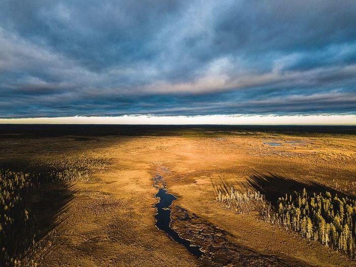 View Of Swamp Against Sky