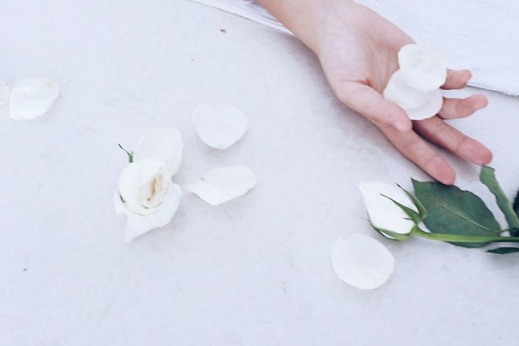 Cropped image of hand with rose petals on table