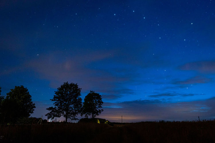 Silhouette trees on landscape against sky at night