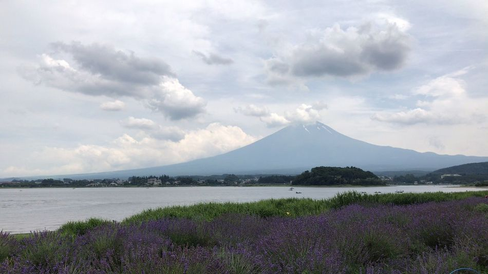 Mountain Beauty In Nature Nature Scenics Tranquil Scene Landscape Tranquility Sky Idyllic No People Day Outdoors Lake Cloud - Sky Mountain Range Water Flower Fujiyama
