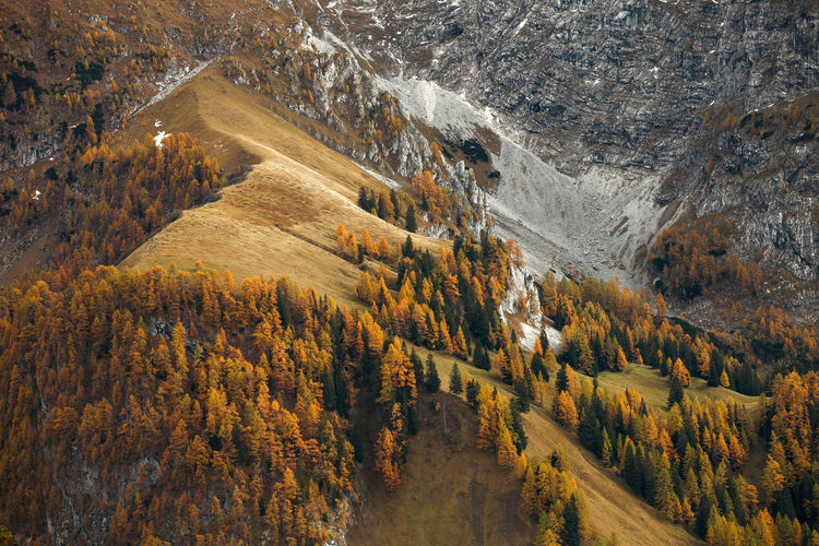 Landscapes from Bavarian Alps, Germany - Europe. Alpine Alps Autumn Bavaria Bavarian Alps Bavarian Landscape Beauty In Nature Europe Fall Forest Germany Landscape Mountain Nature Outdoors Photography Scenics Tourism Tranquility Travel Destinations