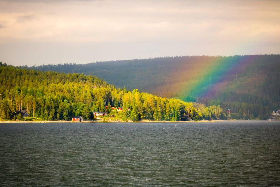 Nature Scenics Beauty In Nature Tree No People Outdoors Day Water Sky Rainbow Rainbow Colors Canon EyeEm Nature Lover EyeEm Masterclass EyeEm Best Shots Landscape