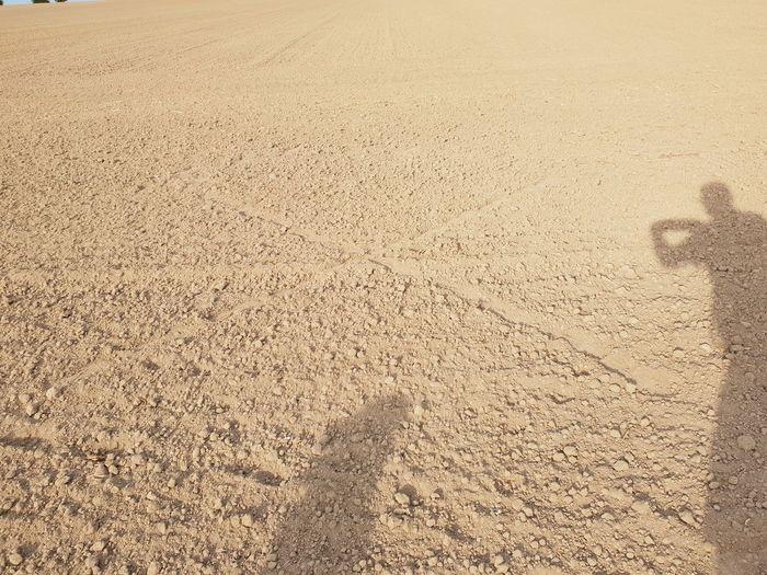 Field shadows 10 10 Field Shadows X Shadow 10 Shadowman Shadowdog EyeEm Here EyeEm Nature Lover Only Field Nature Beautiful Nature Happy Birthday Lumix Nature X Sand Dune Backgrounds Sand Full Frame Textured