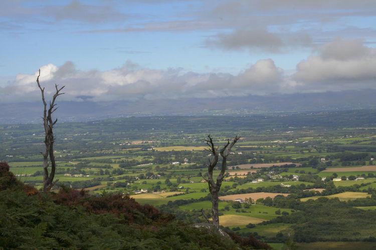 Cloud Grass Ireland Ireland🍀 Killarney  Killarney Ireland Killarney National Park Light Nature Tree Beauitful Day Beauty In Nature Blue Sky Cloud - Sky Clouds And Sky Day Horizon Killarneynationalpark Landscape Mountains Mountains And Sky Nature Rocks Sky Wiev