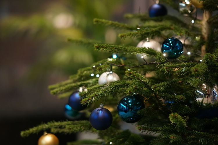 Bauble Celebration Christmas Christmas Bauble Christmas Decoration Christmas Lights Christmas Ornament Christmas Tree Holiday Indoors  Night No People Tradition Tree Vacations