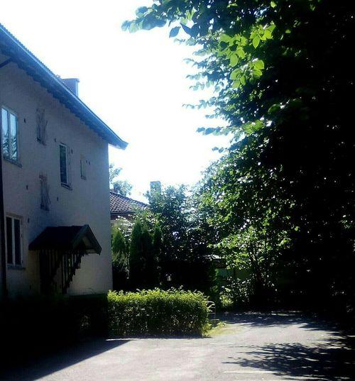 Summersummersummertime Lovemybackyard Beautiful Day LoveMyLoft🌞💟 Home Sweet Home Oslove