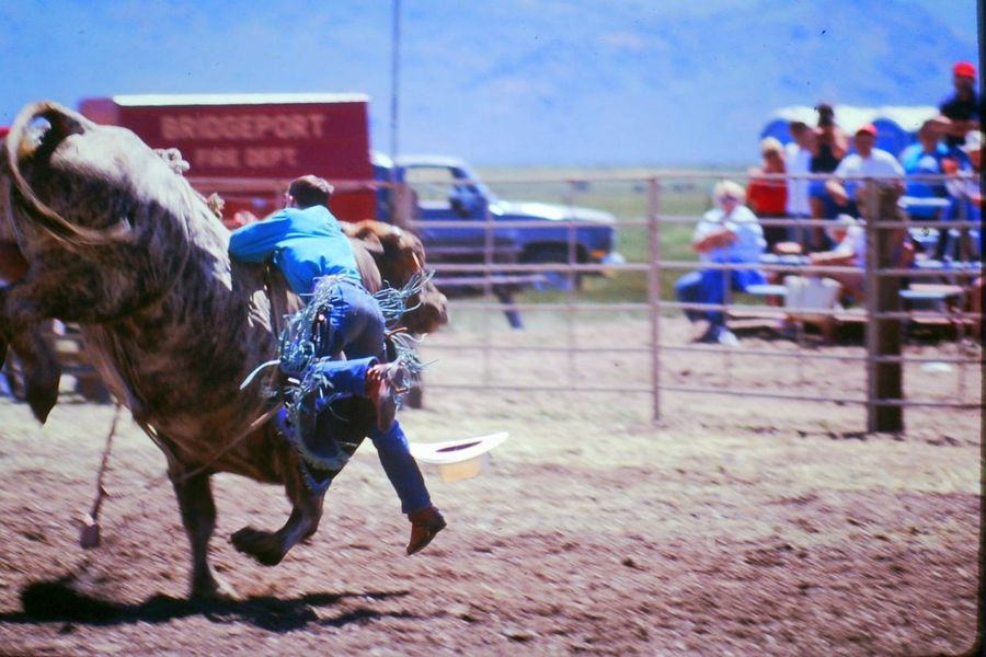 COWBOYS ❤ Chaps Cowgirls (: ❤️ Rodeo Rodeo Time Small Town USA Big Belt Buckles Boots And Jeans Boots And Spurs Boots N Jeans Gal💝 Bull Riding/rodeo Country Life Cowboy Hats  Day Real People Roping Saddle Bronk Saddles Wild West Event
