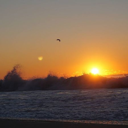 Smithspointbeach Surffishing Saltlife Sunshine Sunrise Longislandlife Waves Crashingwaves Oceanview Crackofdawn Stripers Firstlight Whileyouweresleeping Easylikesundaymorning Lifeisgood