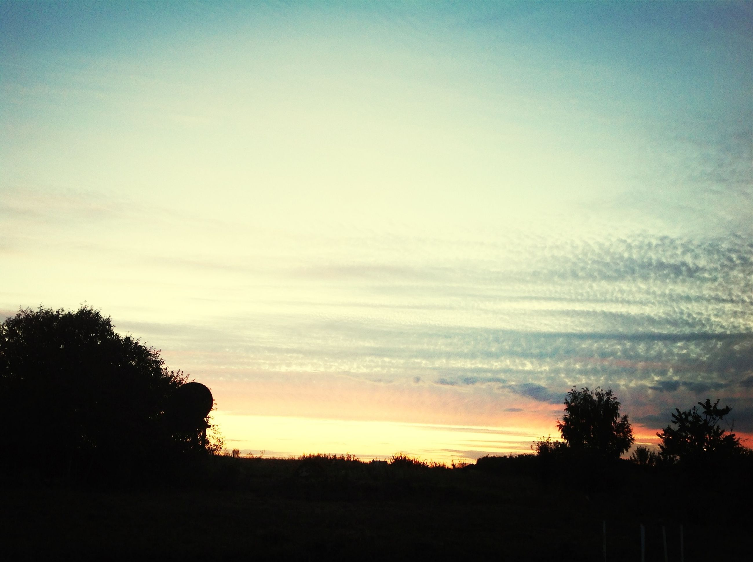 sunset, silhouette, tranquil scene, scenics, tree, tranquility, beauty in nature, sky, landscape, nature, idyllic, orange color, field, cloud - sky, outdoors, dusk, dark, non-urban scene, cloud, no people