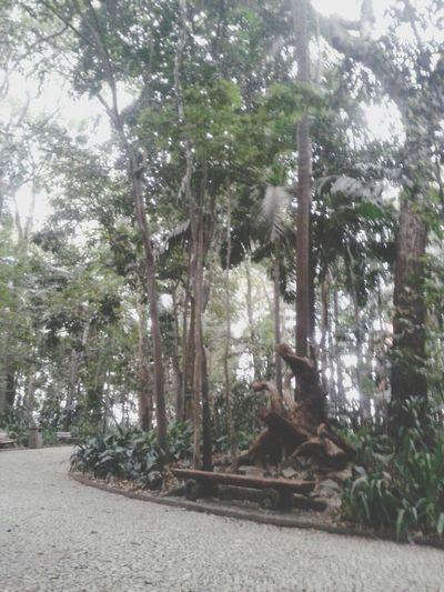 Walking Around VSCO Cam Instagram Nature