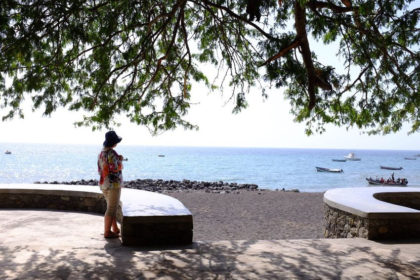 Sitting Full Length Sea Real People Water Outdoors Men Beach Rear View Horizon Over Water Nature Tree Beauty In Nature Women Scenics One Person Day Adult People