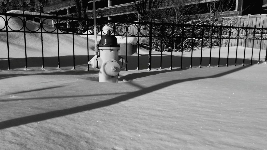 Snow Winter Cold Temperature Leisure Activity Winter Sport Outdoors Rear View Day One Person Snowing People Lovelovelove Blackandwhite Enjoying Life Firehydrant Amazing Single Object Absolutely Incredible Beauty Architecture Ourplanetdaily EyeEm Gallery Winterislong No People