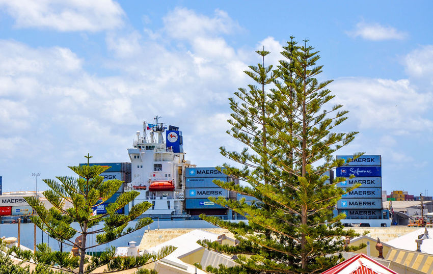 Large barge with stacked sea containers in the Indian Ocean at the Fremantle Port with large Norfolk Pine trees under a blue sky with clouds in Fremantle, Western Australia. Australia Barge Blue Boat Cloud Containers Day Freight Fremantle Port Fremantle, Western Australia Indian Ocean Norfolk Pines Outdoors Port Sea Container Ship Shipping  Shipping Containers Sky Stacked Tall - High Transport Transportation Transporting Tree