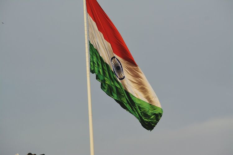❤ Tallest Flag India Indianflag Indian Indiapictures Karnatakaisbeautiful Beginnerphotographer Indianstories Focusphotography Flag In The Wind Flag Pole Indianf One Animal Animal Wildlife Invertebrate Animal Body Part Animals In The Wild Close-up Insect Full Length Focus On Foreground Green Color