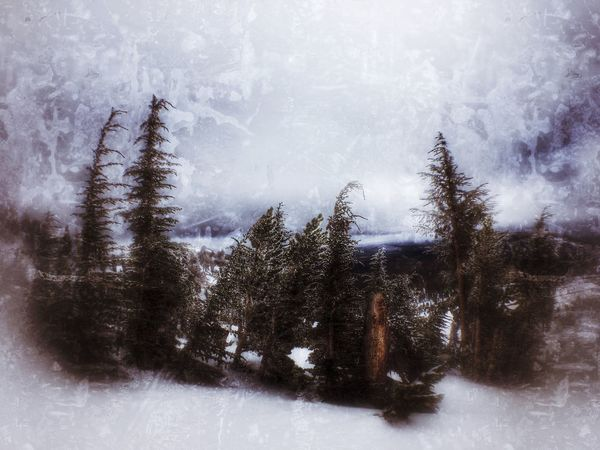 Art Snow ❄ Check This Out Taking Photos From My Point Of View GrungeStyle From My Perspective Snowing ❄ Winter Wonderland ❄