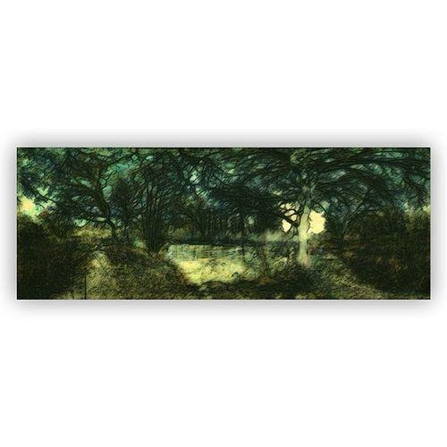 #squaready #autopaint #distressedfx #ipad #iphone4s #tinyshutter #riverwey #byfleet #surrey #panorama #panaramic #landscape Landscape Panorama IPhone4s Ipad Surrey DistressedFX Squaready Tinyshutter Byfleet Riverwey Panaramic Autopaint