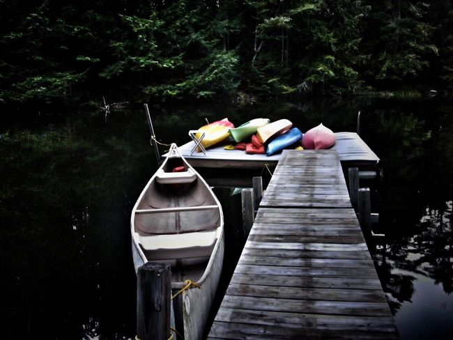 Cove Of The Lake Day Kayaking And Canoe Lake Mode Of Transport Moored Nature Nautical Vessel No People Outdoors The Secret Spaces Tranquility Tree Vermont Lifestyle Water