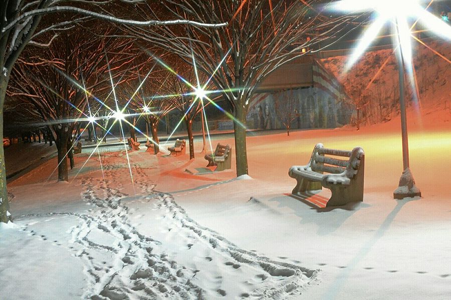 Winter Winter Wonderland Nikon D7100 Park Snow Filter Bench Fun Night
