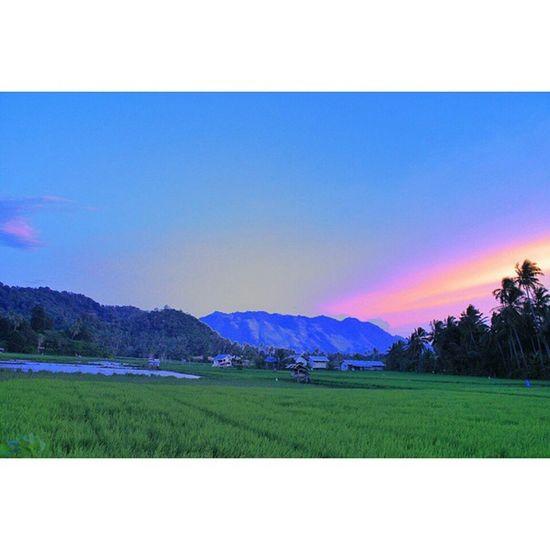 Memories always be memories . Location: Aceh besar, Indonesia Allshot_ Ahd_photo Allunique_pro Greatshotz Hot_shotz Bigshotz Indonesia_photography Ig_indonesia Ig_indonesia_landscape Iloveaceh Instagallery_ina Instanusantara Insta_nusantara Insta_aceh Instacelebes Instagood Mybest_indonesia Mybest_shot Sengajaphoto Wu_indonesia Tgif_longxpo Master_pics Rsa_light