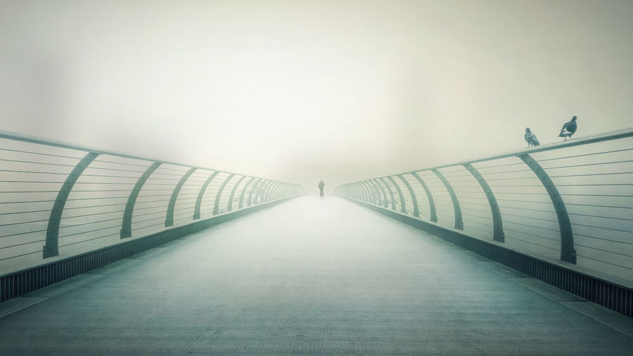 A picture of the millennium bridge in London early on a foggy morning. I was able to get a near perfect symmetry of the bridge, and the blurred cityscape in the background Beautiful Blur Bridge Cold Cold Temperature Colour Day Diminishing Perspective Fog Foggy Green Light Lines London Millennium Bridge Morning No People Outdoors Perspective Pigeon Symmetry TateModern Thames The Way Forward Tower First Eyeem Photo