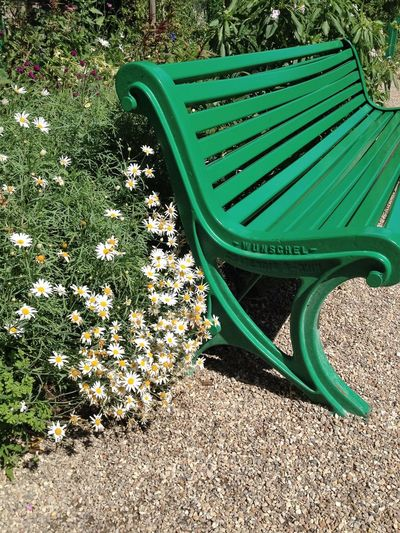Bench Absence Beauty In Nature Close-up Empty Green Color No People Outdoors Seat Tranquility