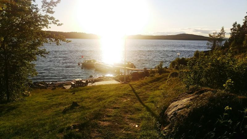 Swedish summer! Enjoying The Sun Summer2015 Örnsköldsvik Highcoast Ocean Östersjön Eveningsun