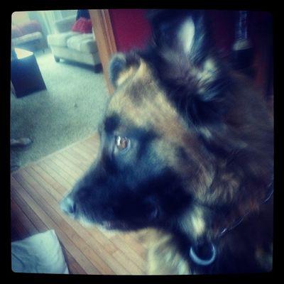 My handsome boy