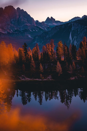 Scenic view of lake by trees against sky during sunset