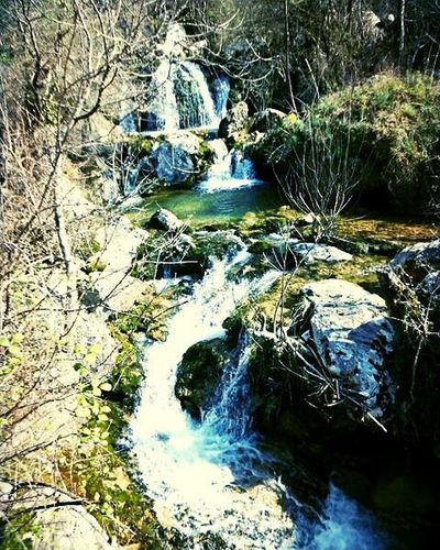 Water stream flows through the village and takes breath away! Naturelover Montenegro Wild Beauty Riverside Wildlife Stream - Flowing Water Nature The Greatest Artist Nopeople Explore Montenegro River Vilage