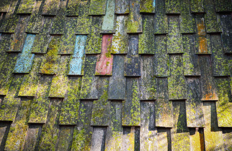 Old wooden roof tiles pattern with green moss texture background Abstract Architecture Backdrop Background Brown Building Construction Cover Detail Element Exterior Green Growth Home House Lichen Material Moss Natural Nature Old Outdoors Pattern Plank Plant Red Repair Retro Roof Roofing Rough Rural Shingle Slate Structure Surface Texture Textured  Tile Tiled Tiles Top Traditional Vintage Wall Wallpaper Weathered White Wood Wooden