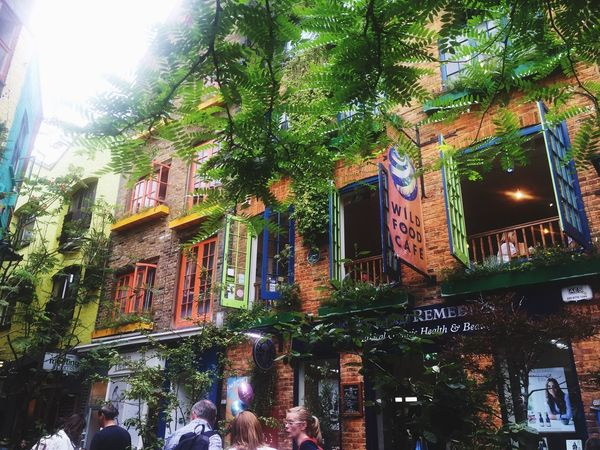 """""""Colorside"""" Building Exterior Architecture Tree Window Colors Color Colorful Neal's Yard London England"""