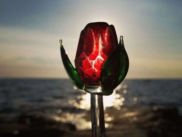 💕 forever 💕 Still Loving You Horizon Over Water Rosé No People Summer Outdoors Sea Beach Closeness Love Unforgettable Forever Summertime Glas Red Sunset Majestic Deep Love Glas Rose Reflection Beautiful Infinitely Romantic Lonely Remembrance