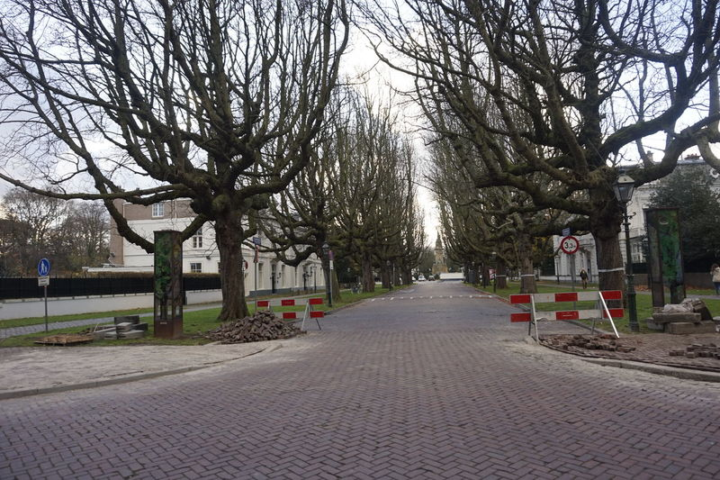 Road construction Construction Road Bare Tree Becareful Built Structure Day No People Outdoors Repair Roadconstruction Springtime The Way Forward Tree