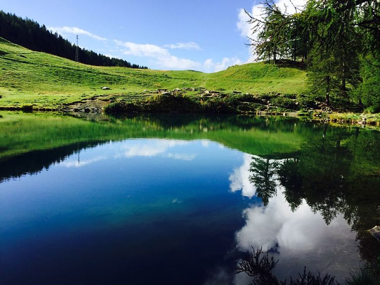 Perspectives On Nature Tranquility Sky Nature Water Reflection Lake Tree No People Landscape Blue Day Outdoors Green Color Silence