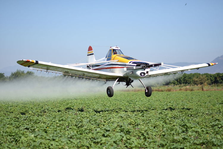 Aerospace Industry Air Vehicle Airplane Airport Runway Day Fertility Fertilizer Fighter Plane Grass Mexico Middleofnowhere Military Military Airplane No People Old-fashioned Oldschool Outdoors Sky Transportation