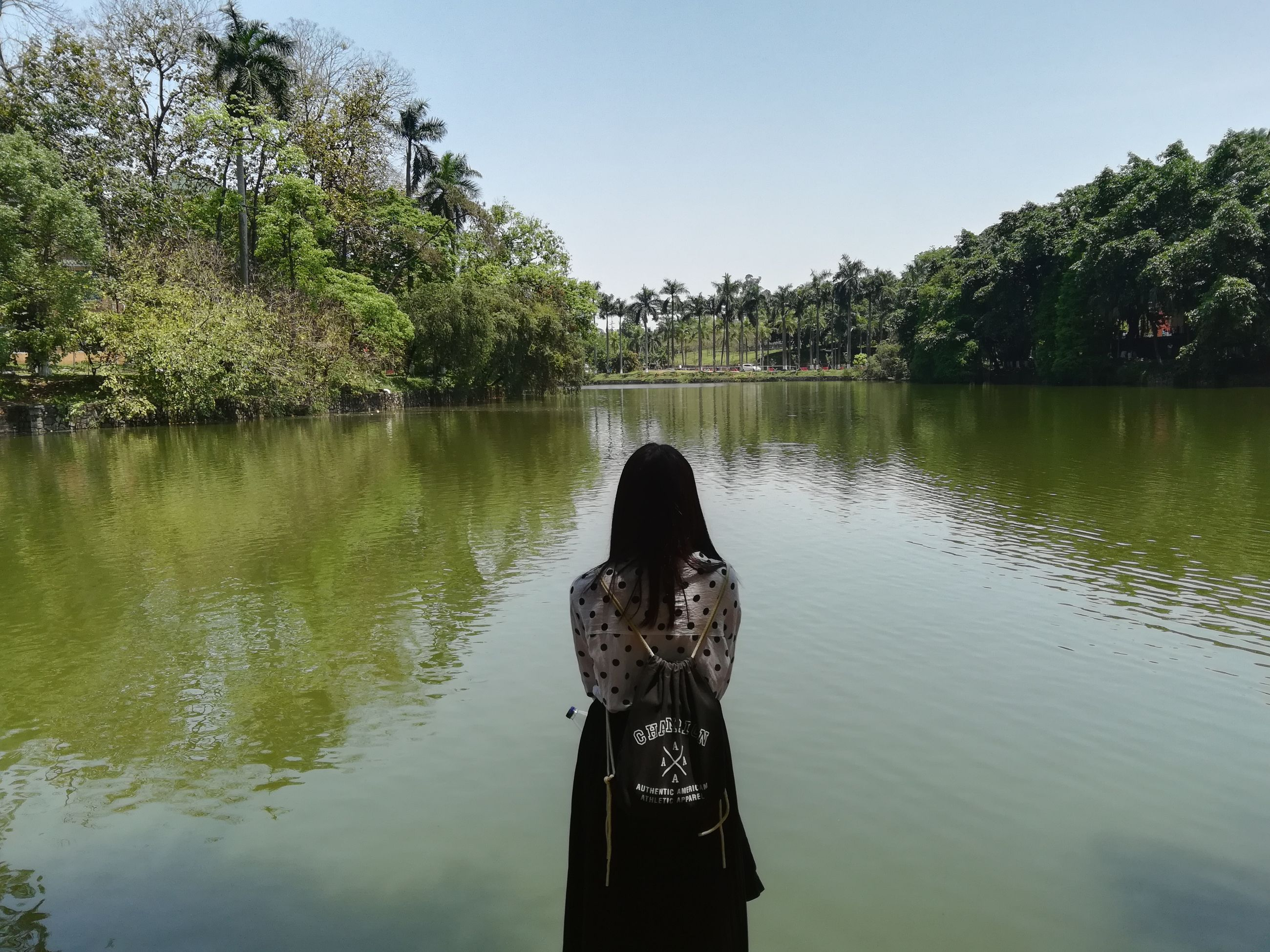 tree, water, one person, real people, standing, nature, outdoors, rear view, reflection, day, leisure activity, lake, lifestyles, beauty in nature, growth, women, photographing, clear sky, sky, young women, young adult, people