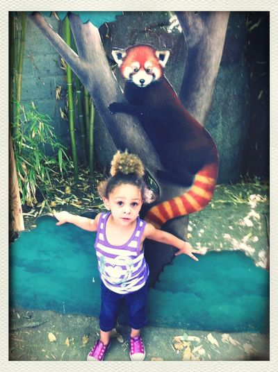 Babysitting <3 Her Taking Photos Zoo