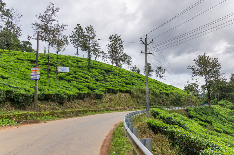 A beautiful road at Wayanad, Kerala, India. Beauty In Nature Cable Cloud - Sky Connection Day Electricity  Green Color India Kerala Nature No People Outdoors Plantation Road Road Sign Scenics Sky Tea Plantation  Telephone Line Telephone Pole The Way Forward Tranquility Transportation Tree Wayanad The Great Outdoors - 2017 EyeEm Awards