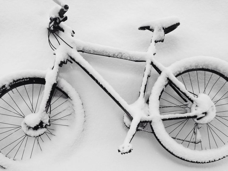 I leave my bike outside for 40 minutes..... Check This Out Showcase: February Snow ❄ Blackandwhitephotography Black And White Photography EyeEm Best Shots - Black + White Black&white EyeEm Best Shots The Real Greenland Black And White Blackandwhite Photography Monochrome Blackandwhite Black & White Blizzard My Bike Montainbike Bike Celebrate Your Ride