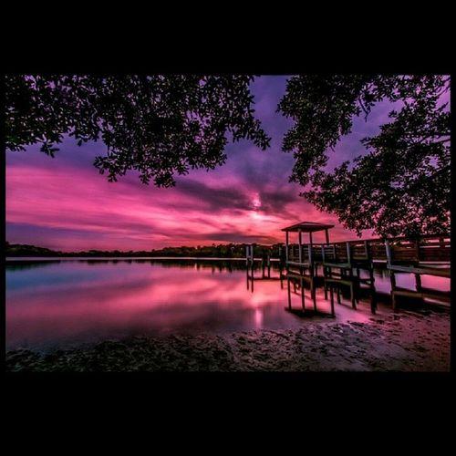 Pembe Tutku Pink Passion nature picoftheday
