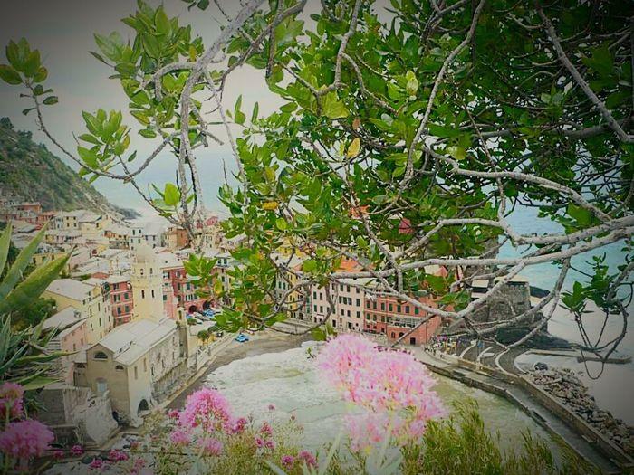 Cinque Terre Liguria Italia Italy❤️ Tracieloeterra Tracieloemare Entre Ciel Et Terre Entre Terre Et Mer Nature_collection Betweenskyandsea Landscape Landscape_Collection Landscape_photography