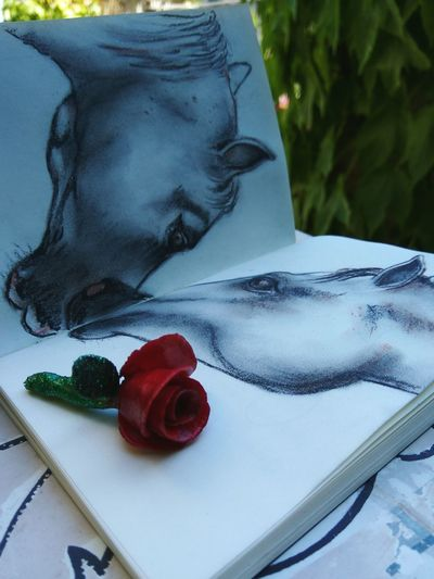 No People Red Day Close-up Outdoors Nature Horses Drawing Picture Flower Rose Rose - Flower Notebook Gift Love Animal Themes Animal Kiss Artist Art Paper Art Pencil Drawing Relationship Lovers Couple Bestgift EyeEm Ready