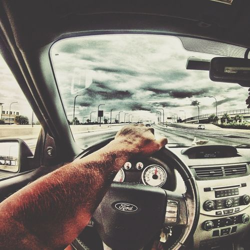 From My Point Of View Gopro Eye4photography  EyeEm Best Shots