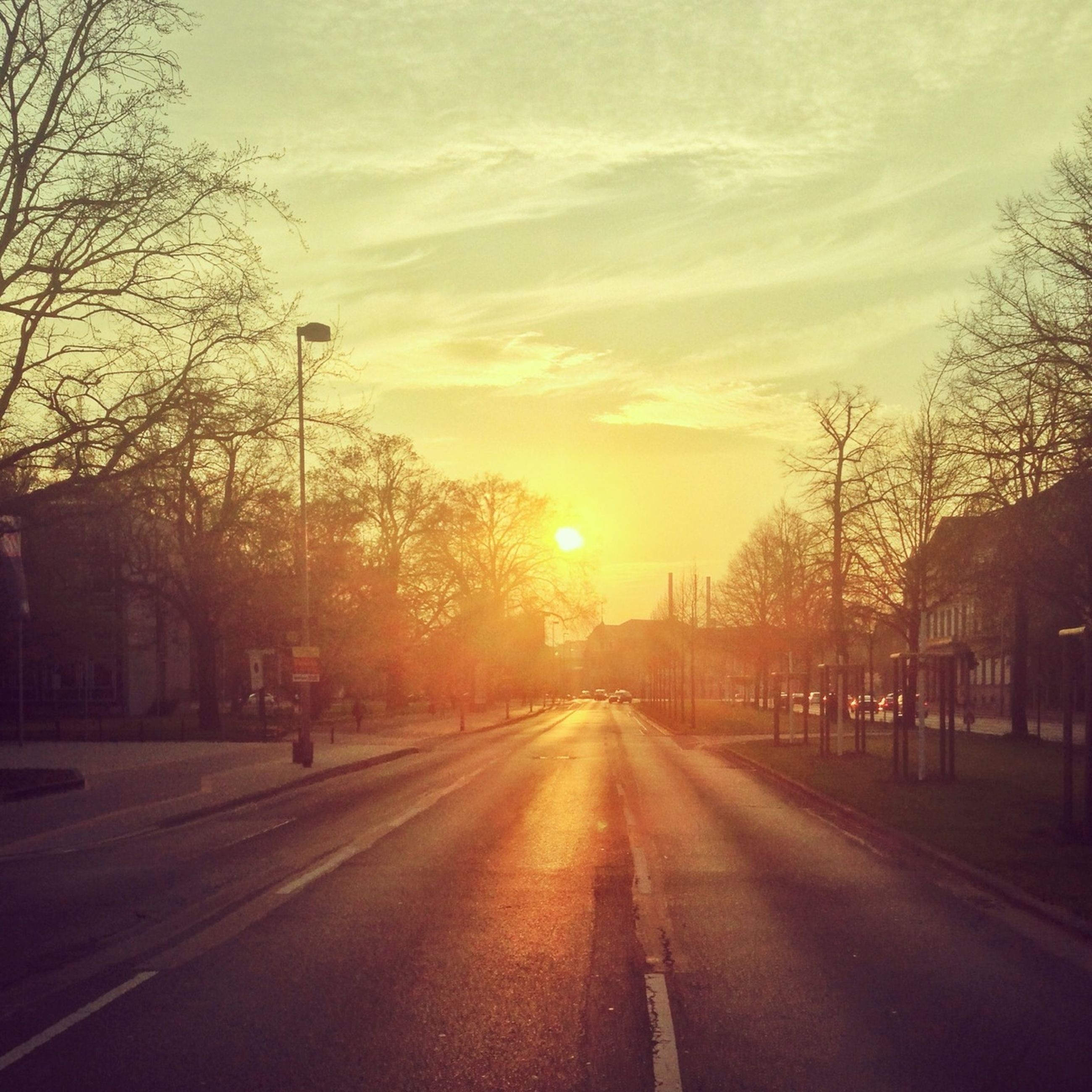 sunset, the way forward, transportation, tree, road, diminishing perspective, sky, vanishing point, sun, street, road marking, silhouette, building exterior, city, sunlight, bare tree, car, cloud - sky, orange color, built structure