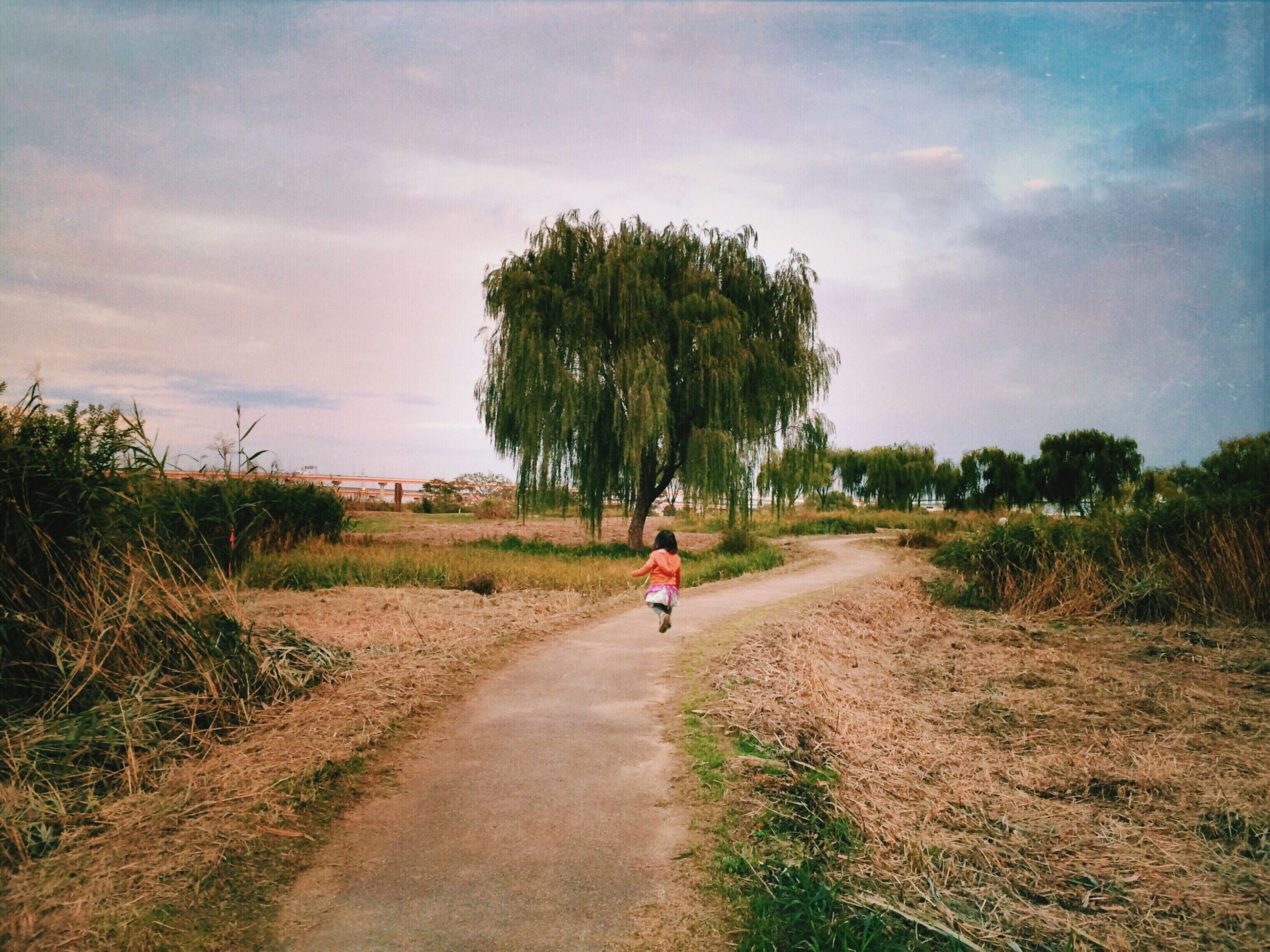 the way forward, full length, sky, tree, lifestyles, transportation, walking, leisure activity, road, dirt road, rear view, men, bicycle, grass, riding, diminishing perspective, cloud - sky, nature