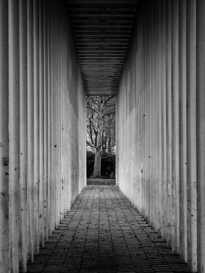 Empty narrow corridor along building