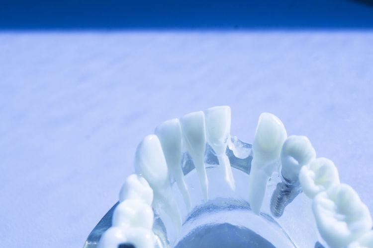 Close-up of ice on sea