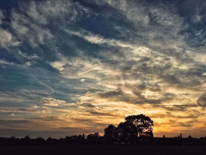 October sky Silhouette Tree Sunset Tranquil Scene Tranquility Scenics Beauty In Nature Landscape Nature Growth Sky Cloud - Sky Field Outdoors Dark Majestic Cloudy Calm Outline Non-urban Scene My Year My View