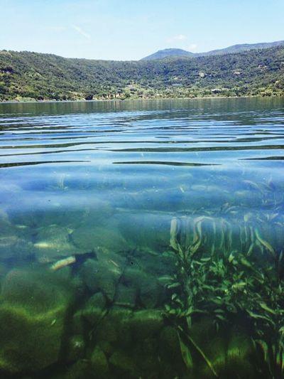 Il lago di nemi leggenda della dea Diana relax holiday