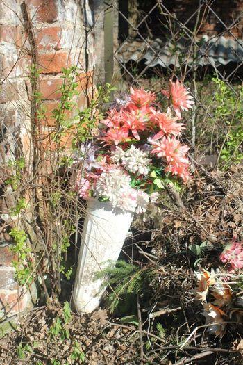 Pravdino Cemetery Flowers Dead Russian Death